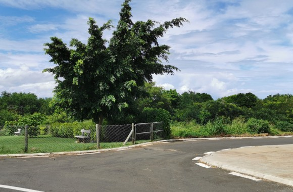 Bien à vendre - Terrain résidentiel - flic-en-flac